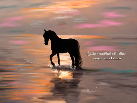 A horse's morning walk on the beach